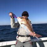 12月14日の釣果報告!! 鯛ラバで3キロ浮上